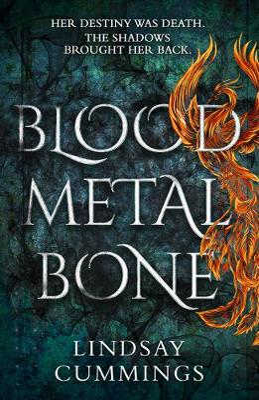 Picture of Blood Metal Bone