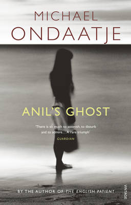 Picture of Anil's Ghost