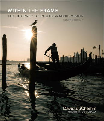 Picture of Within the Frame : The Journey of Photographic Vision