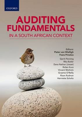Picture of Auditing fundamentals in a South African context