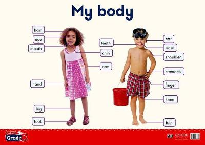 Picture of My body: Gr R: Poster 4