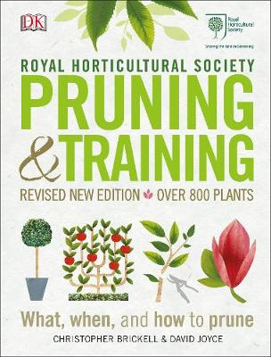 Picture of RHS Pruning & Training