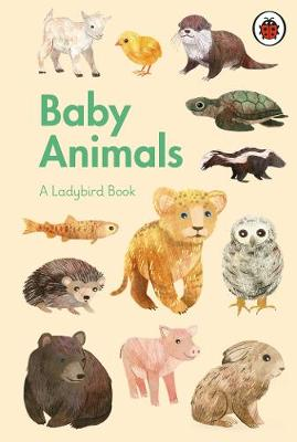 Picture of A Ladybird Book: Baby Animals