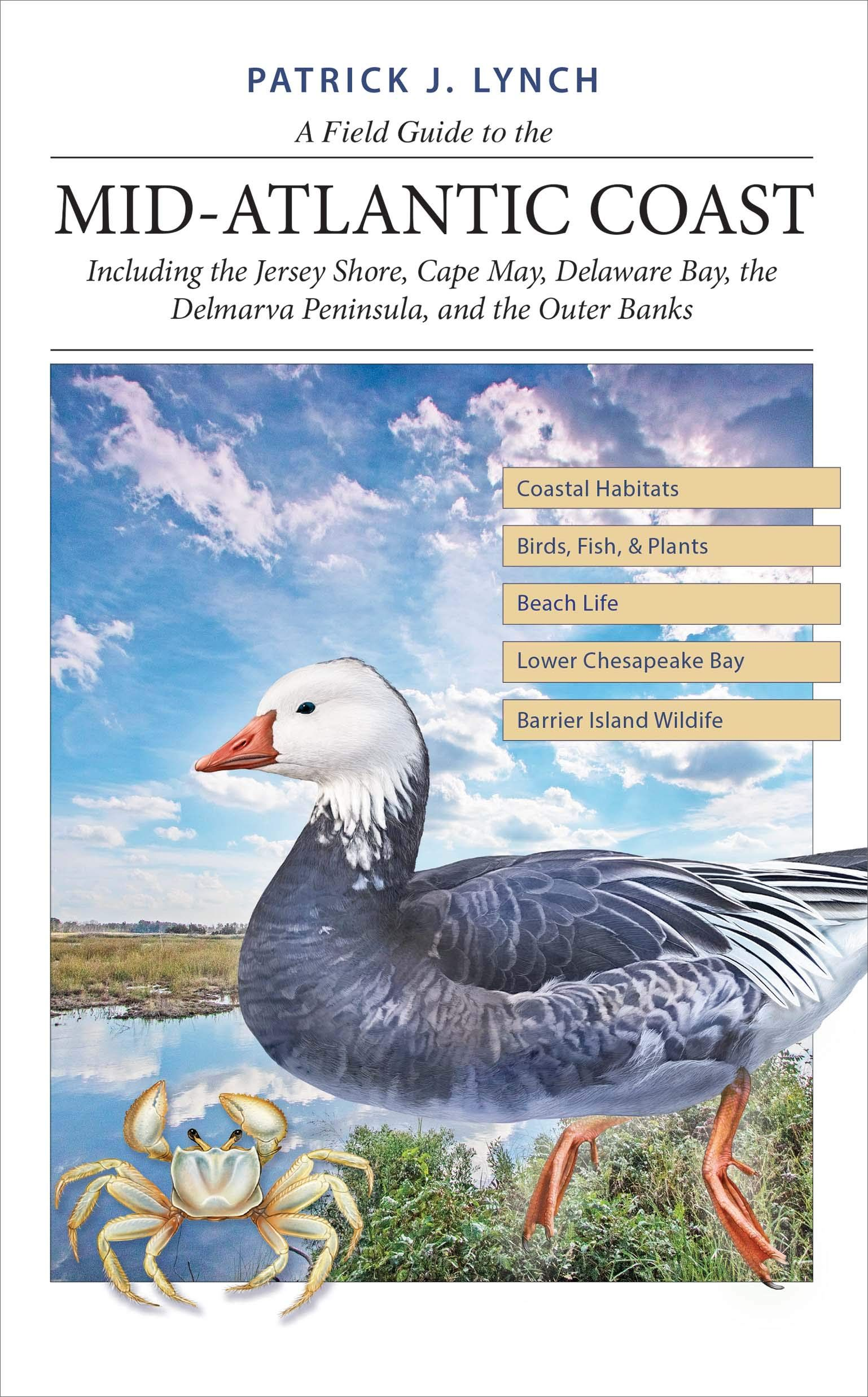 Picture of A Field Guide to the Mid-Atlantic Coast : Including the Jersey Shore, Cape May, Delaware Bay, the Delmarva Peninsula, and the Outer Banks
