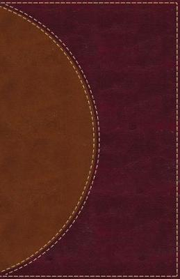 Picture of Amplified Reading Bible, Leathersoft, Brown : A Paragraph-Style Amplified Bible for a Smoother Reading Experience