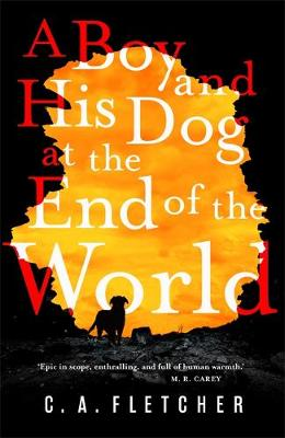 Picture of A Boy and his Dog at the End of the World