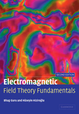 Picture of Electromagnetic Field Theory Fundamentals
