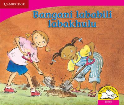 Picture of Bangani lababili labakhulu: Gr R - 3: Reader