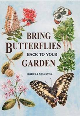 Picture of Bring butterflies back to your garden