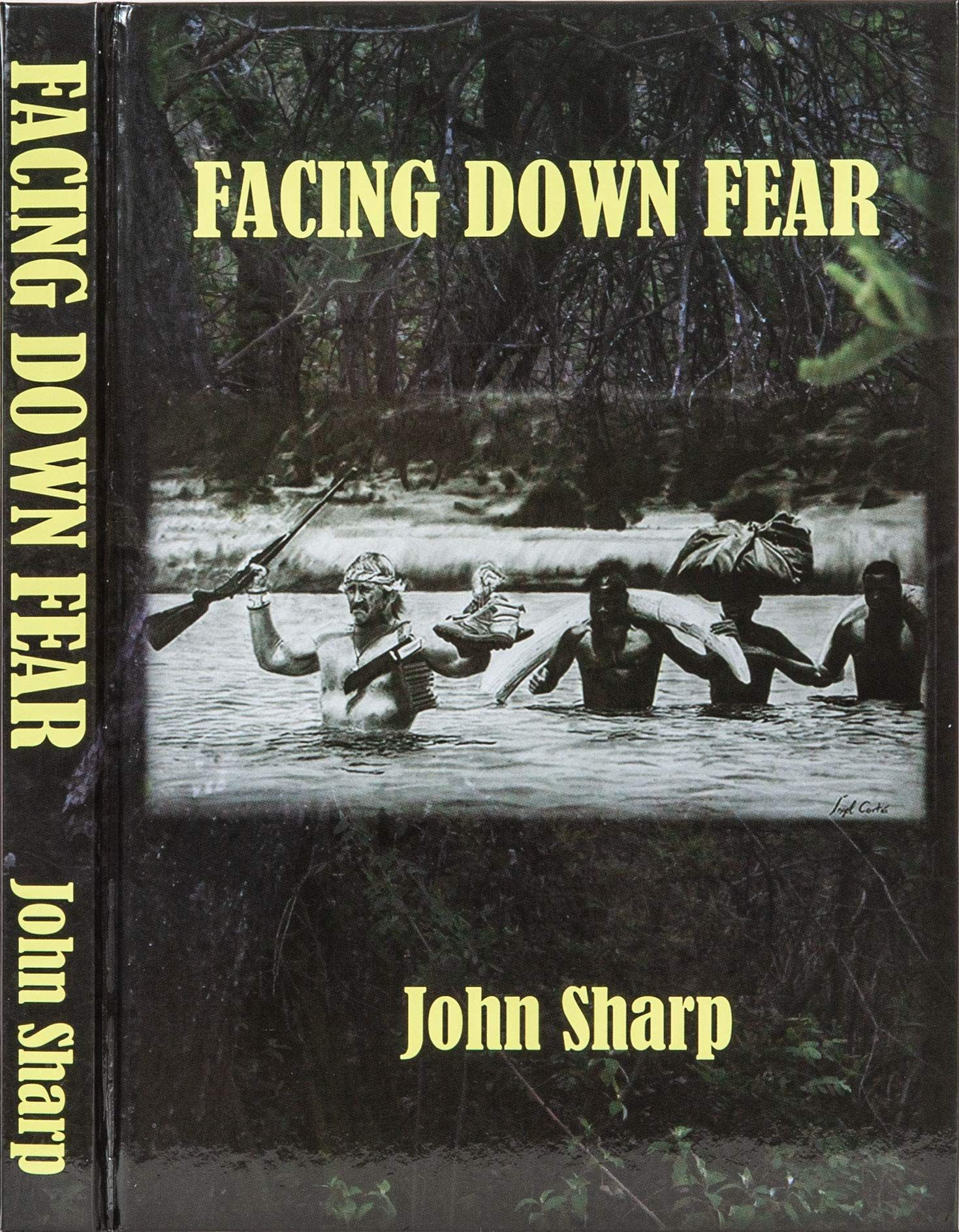 Picture of Facing Down Fear