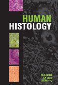 Picture of Human histology
