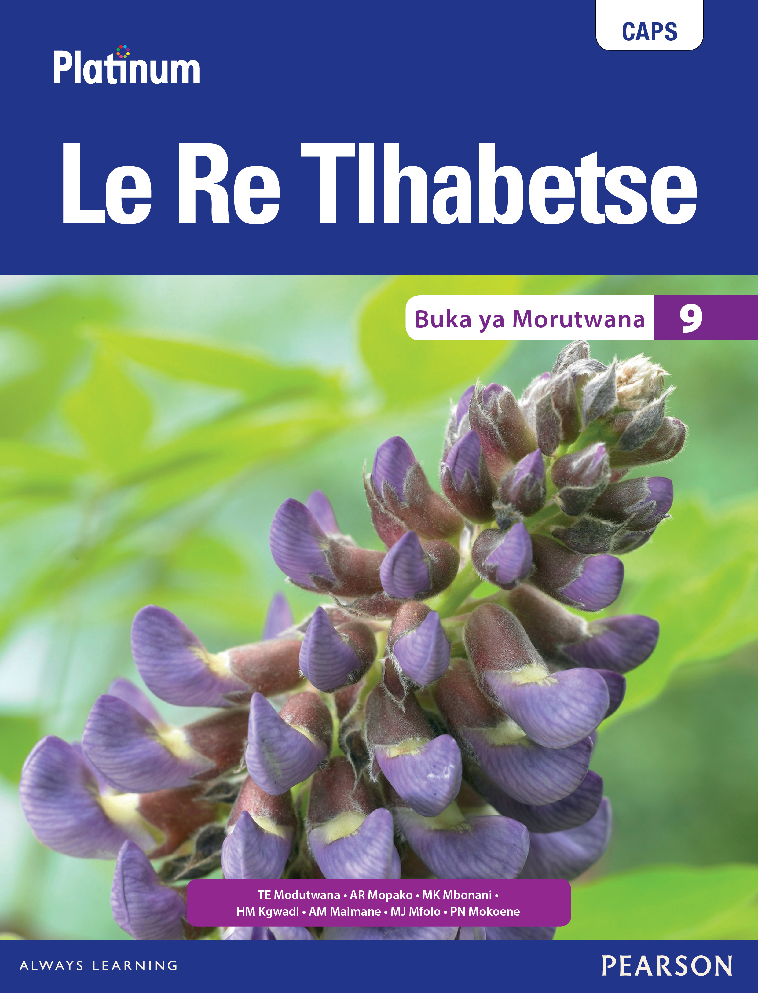 Picture of Platinum Le Re Tlhabetse CAPS: Platinum Le Re Tlhabetse: Grade 9: Learner's book Gr 9: Learner's Book