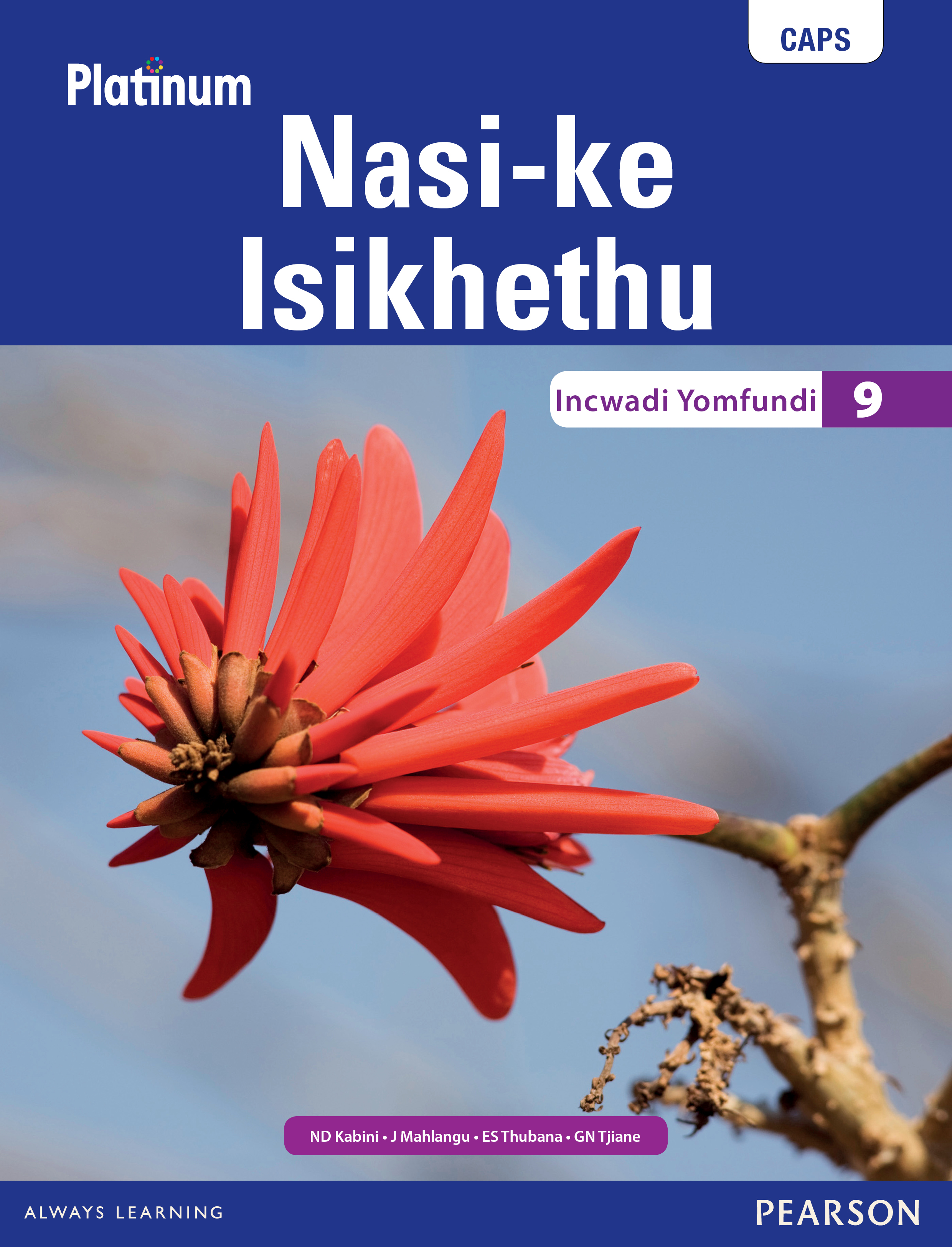 Picture of Platinum Nasi-ke Isikhethu: Grade 9: Learner's book