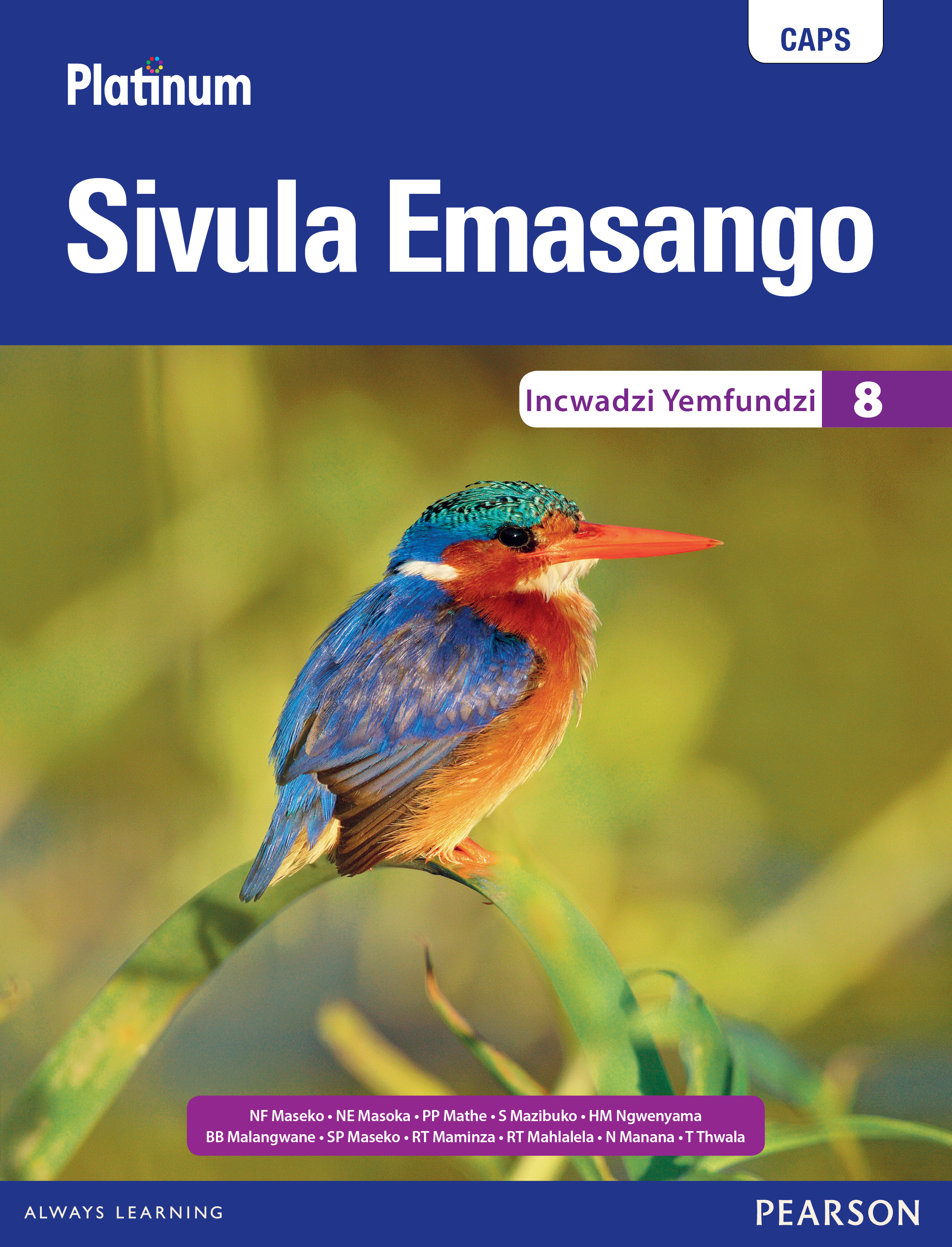 Picture of Platinum sivula emasango CAPS: Gr 8: Learner's book