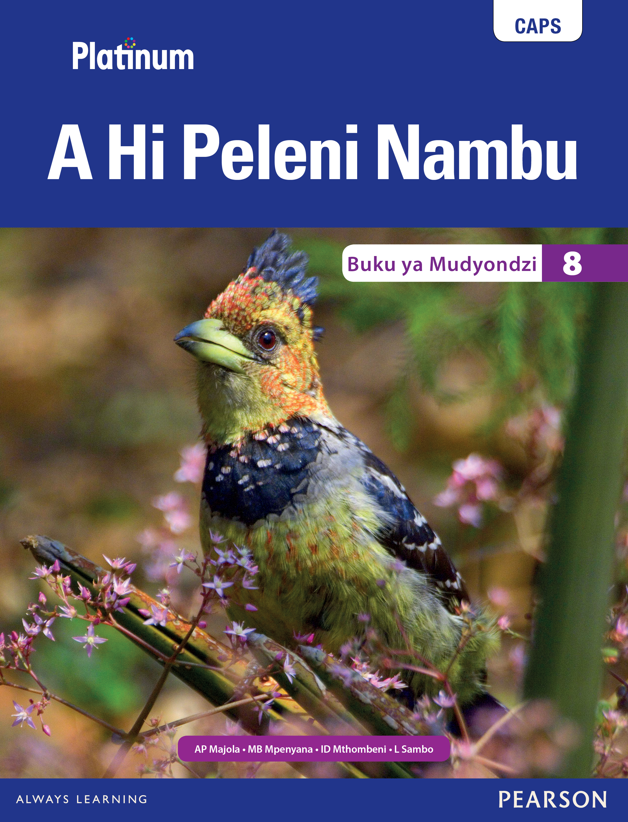 Picture of Platinum A Hi Peleni Nambu: Grade 8: Learner's book