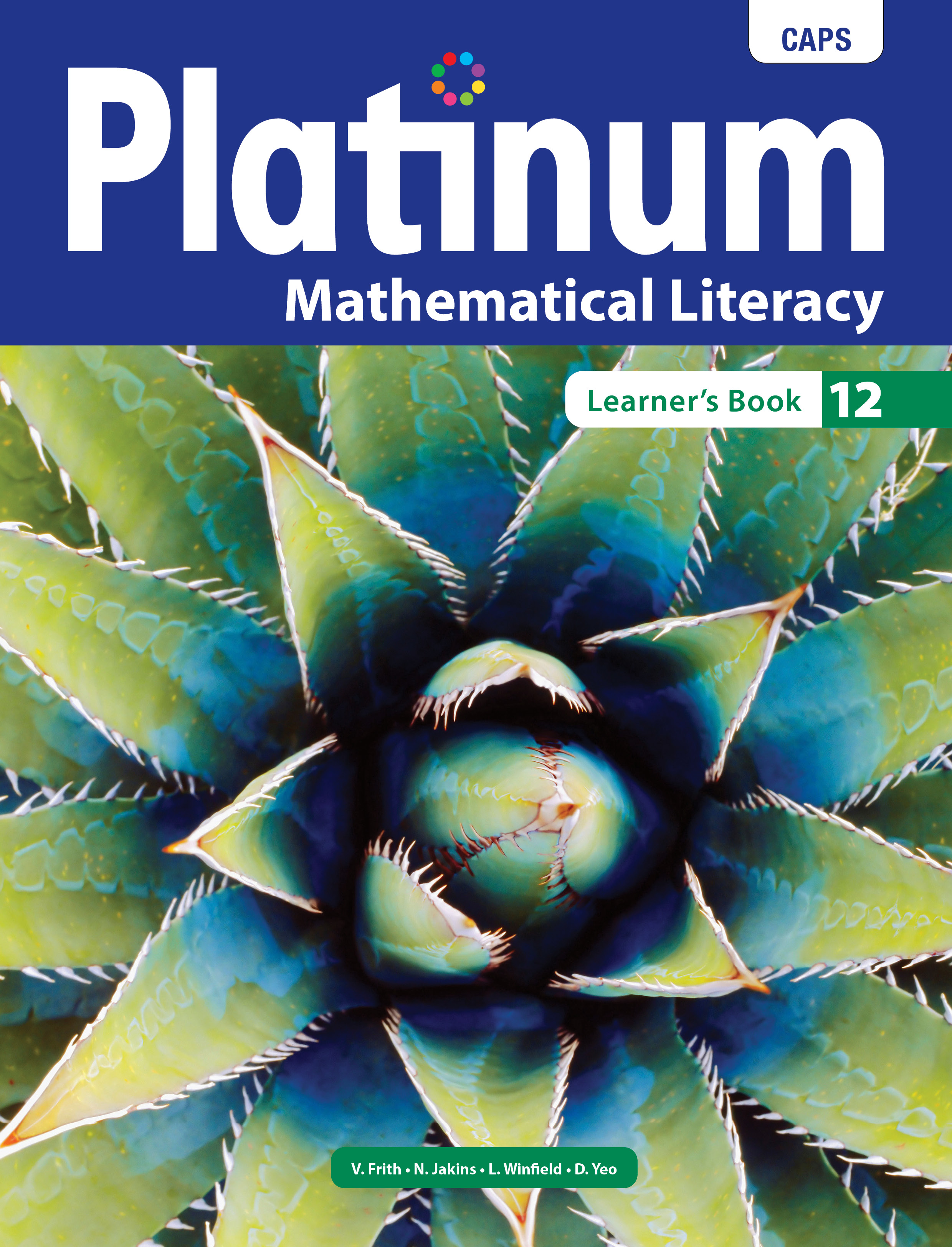 Picture of Platinum mathematical literacy