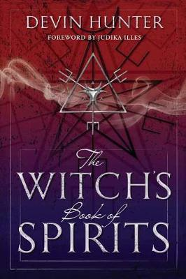 Picture of The Witch's Book of Spirits