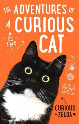 The Adventures of a Curious Cat : wit and wisdom from Curious Zelda, purrfect for cats and their humans