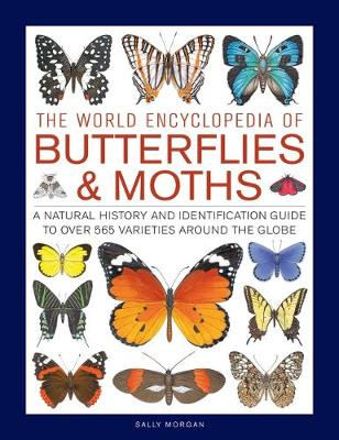 Picture of Butterflies & Moths, The World Encyclopedia of : A natural history and identification guide to over 565 varieties around the globe