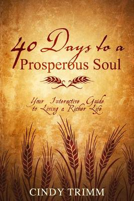 Picture of 40 Days to a Prosperous Soul : Your Interactive Guide to Living a Richer Life