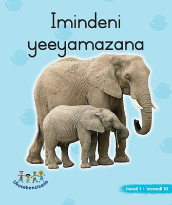 Picture of Imindeni YeeYamazana