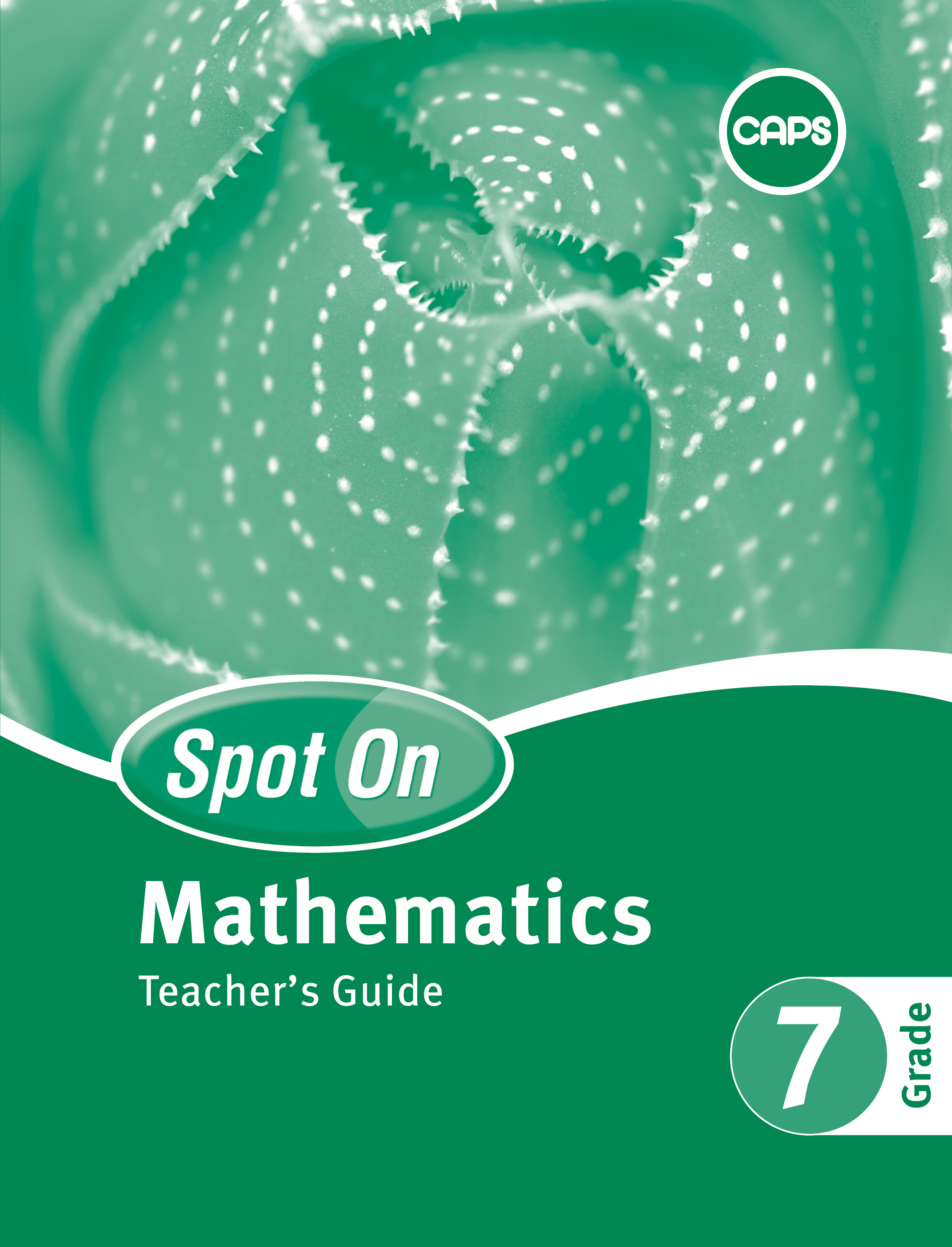 Spot On Mathematics: Grade 7: Teacher's Guide and Free Poster Pack