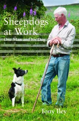 Picture of Sheepdogs at Work : One Man and His Dog