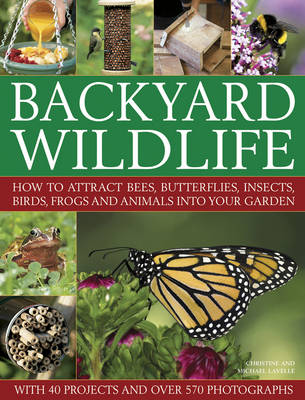 Picture of Backyard Wildlife: How to Attract Bees, Butterflies, Insects, Birds, Frogs and Animals into Your Garden