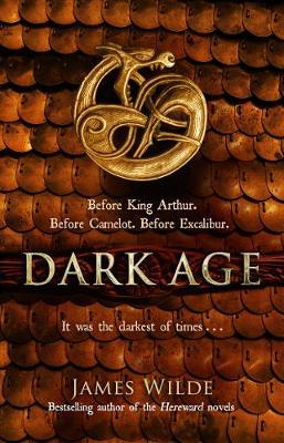 Picture of Dark Age : (Dark Age Book 2)