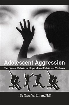 Picture of Adolescent Aggression : The Gender Debate on Physical and Relational Violence