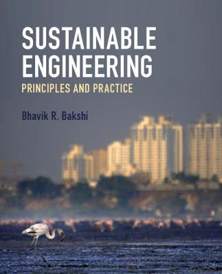 Picture of Sustainable Engineering : Principles and Practice