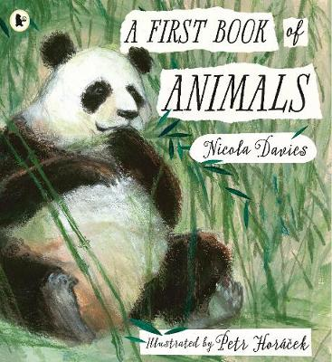 Picture of A First Book of Animals