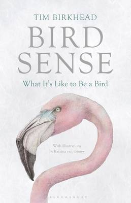 Picture of Bird Sense : What It's Like to Be a Bird