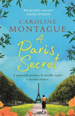 Picture of A Paris Secret