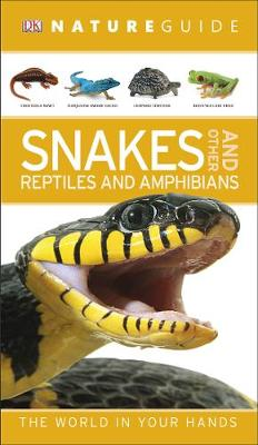 Picture of Nature Guide Snakes and Other Reptiles and Amphibians