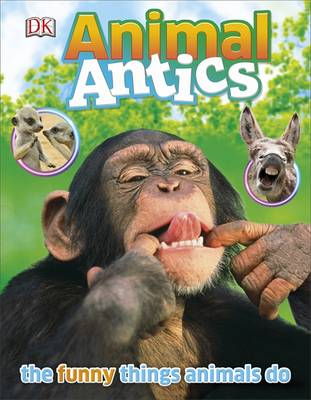 Picture of Animal Antics
