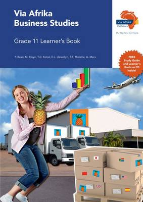 Via Afrika business studies: Gr 11: Learner's book