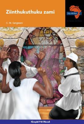 Via Afrika isiNdebele CAPS: Gr 9: Novel : Home language