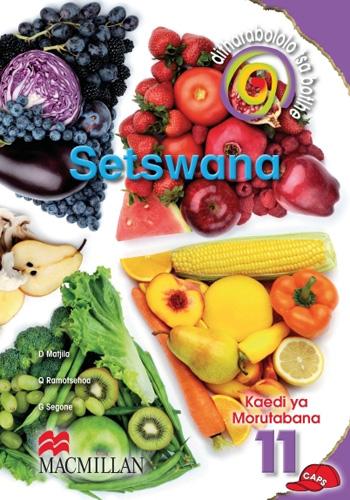 Picture of Ditharabololo tsa botlhe Setswana : Gr 11: Teacher's guide : Home language