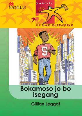 Picture of Bokamoso jo bo isegang: Gr 4 : Home language