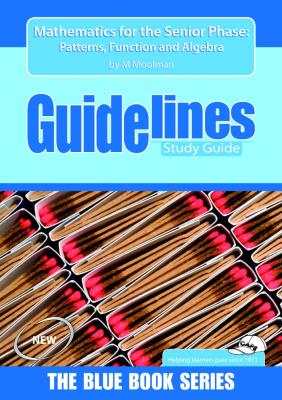 Picture of Guidelines mathematics for the senior phase: Grade 7