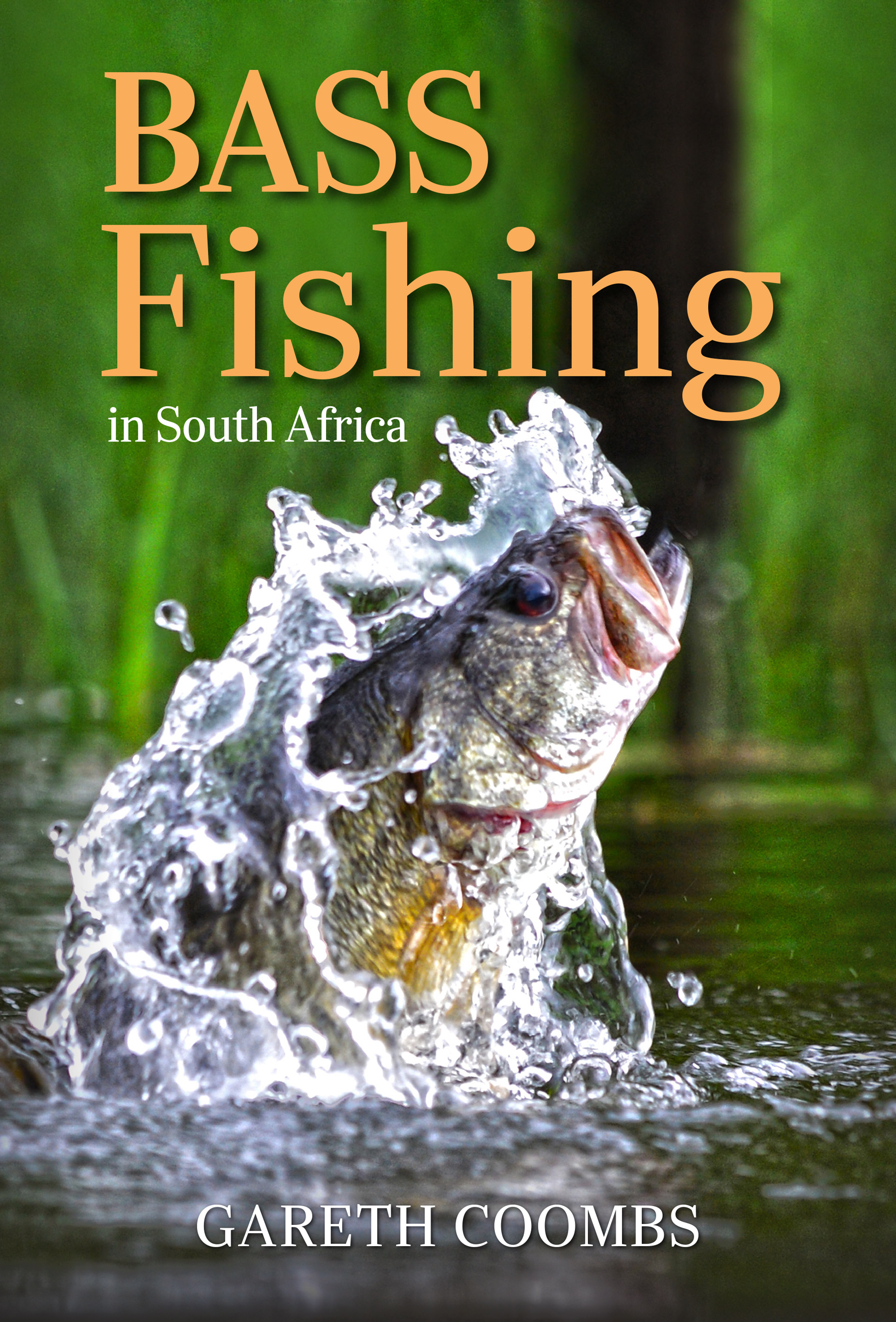 Picture of Bass Fishing in South Africa