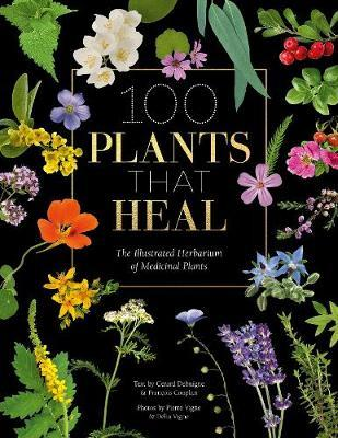 Picture of 100 Plants that Heal : The illustrated herbarium of medicinal plants
