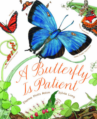 Picture of A Butterfly is Patient