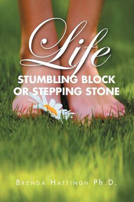 Picture of Life - Stumbling Block or Stepping Stone