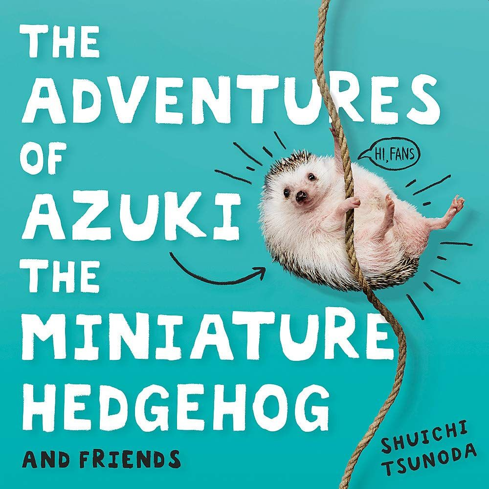 Picture of The Adventures of Azuki the Miniature Hedgehog and Friends