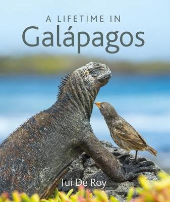 Picture of A Lifetime in Galapagos
