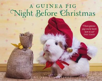 Picture of A Guinea Pig Night Before Christmas