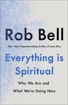 Everything is Spiritual : A Brief Guide to Who We Are and What We're Doing Here