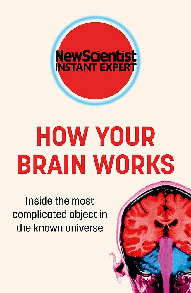 Picture of How Your Brain Works : Inside the most complicated object in the known universe